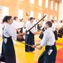 2016_aikido_stage-pour-tous_couleur-06