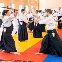 2016_aikido_stage-pour-tous_couleur-07