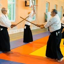 2016_aikido_stage-pour-tous_couleur-15