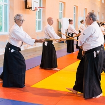 2016_aikido_stage-pour-tous_couleur-16