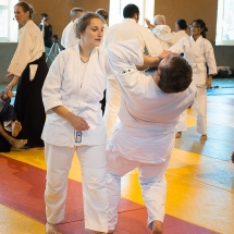 2016_aikido_stage-pour-tous_couleur-21