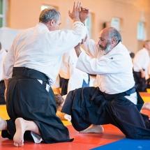2016_aikido_stage-pour-tous_couleur-34