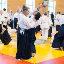 2016_aikido_stage-pour-tous_couleur-40