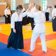 2016_aikido_stage-pour-tous_couleur-41