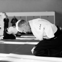 2016_aikido_stage-pour-tous_nb-06