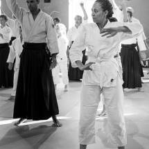 2016_aikido_stage-pour-tous_nb-09