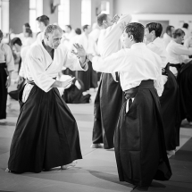 2016_aikido_stage-pour-tous_nb-30