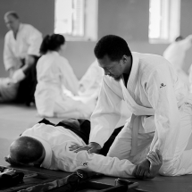 2016_aikido_stage-pour-tous_nb-32