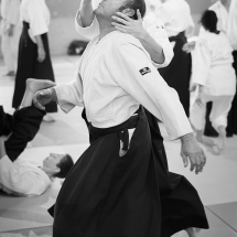 2016_aikido_stage-pour-tous_nb-36